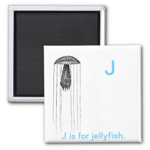 J is for Jelly fish. Refrigerator Magnets