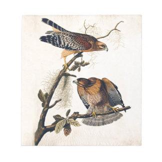 J.J. Audubon (halcón llevado a hombros rojo) Libreta Para Notas