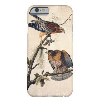 J.J. Audubon (halcón llevado a hombros rojo) Funda De iPhone 6 Barely There