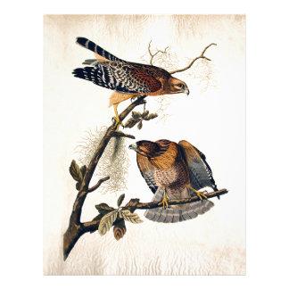J.J. Audubon (halcón llevado a hombros rojo) Plantillas De Membrete