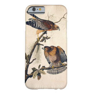 J.J. Audubon (Red Shouldered Hawk) (1829) Barely There iPhone 6 Case