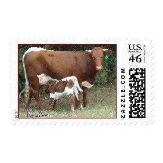 J J stamp