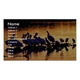 J. N. Ding Darling National Wildlife Refuge Business Card