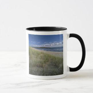 J.T. Chessman Provincial Park, Dune grass Mug