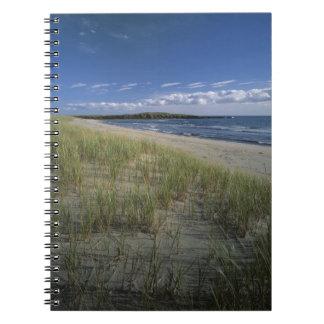J T Chessman Provincial Park Dune grass Note Book