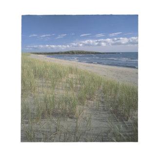 J.T. Chessman Provincial Park, Dune grass Notepad