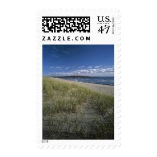 J.T. Chessman Provincial Park, Dune grass Postage