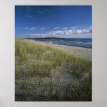 J.T. Chessman Provincial Park, Dune grass Print