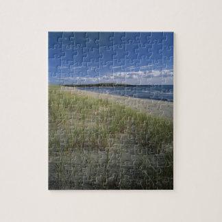 J.T. Chessman Provincial Park, Dune grass Puzzle