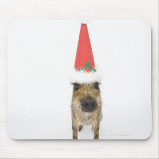 Jabalí con el gorra del navidad alfombrilla de ratón