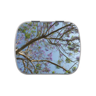 jacaranda tree branches flowers sky jelly belly tins