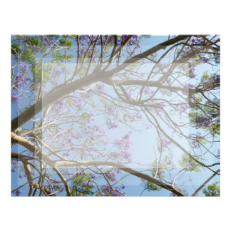 jacaranda tree branches flowers sky letterhead