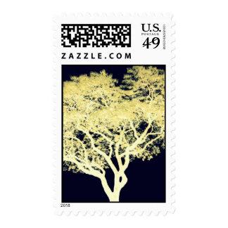 Jacaranda Tree Stamps