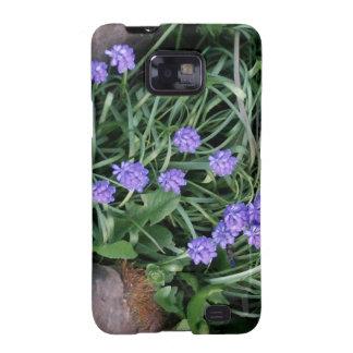 jacinto de uva común, flor púrpura azul, floral samsung galaxy s2 fundas