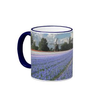Jacintos azules en un campo Holanda Tazas De Café