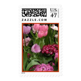 Jacintos de los tulipanes de las margaritas estampilla