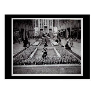 Jacintos en el centro 1952 NYC de Rockefeller de Postal