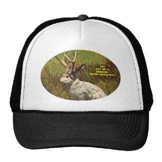 JACK-A-LOPE Hat