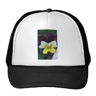 Jack and Jill Trucker Hat