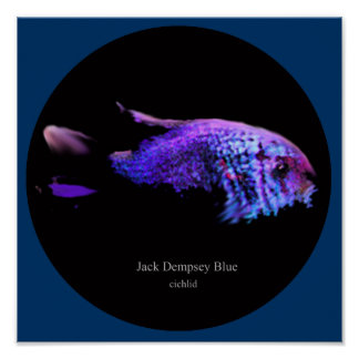 Jack dempsey blue poster