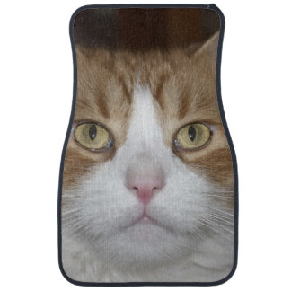 Jack domestic orange and white maine coon cat car mat