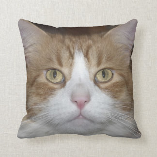 Jack domestic orange and white maine coon cat throw pillow