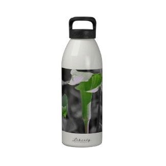 Jack in the Pulpit Water Bottle