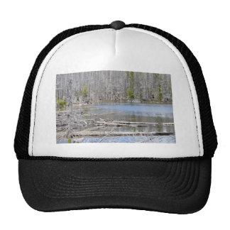 Jack Lake Trucker Hat