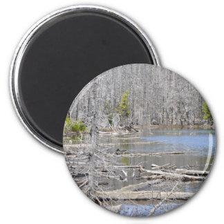 Jack Lake Refrigerator Magnets