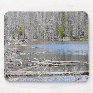 Jack Lake Mouse Pad