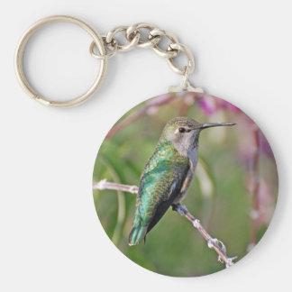 Jack London Square Hummingbird Keychain