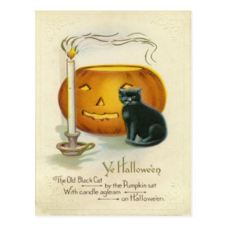 Jack O Lantern Black Cat Candle Postcard