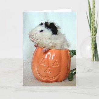 Jack-O-Lantern Guinea Pig card