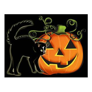 Jack-O-Lantern N Cat Postcard