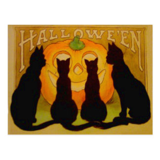 Jack O Lantern Pumpkin Black Cat Postcard