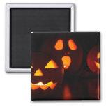 Jack-O-Lantern Pumpkins 2 Inch Square Magnet