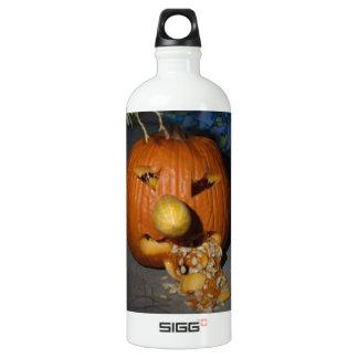 Jack o lantern SIGG traveler 1.0L water bottle