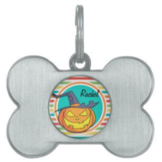 Jack-o-linterna de la bruja en rayas brillantes placas de mascota