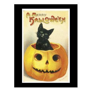 Jack-o-Linterna y gato de Halloween Postal
