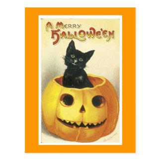 Jack-o-Linterna y gato de Halloween Postales
