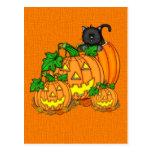 Jack O'Lanterns Halloween Postal