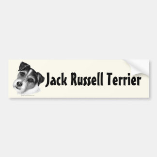 Jack (párroco) Russell Terrier Pegatina Para Auto