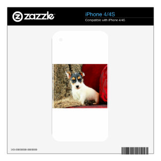 Jack Puppy Love Decal For iPhone 4