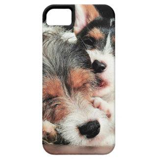 Jack Puppy Love iPhone SE/5/5s Case