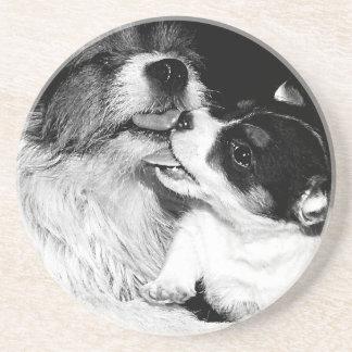 Jack Puppy Love Sandstone Coaster