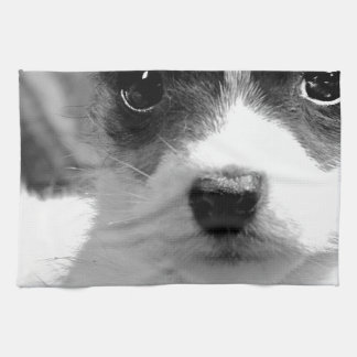 Jack Puppy Love Towels