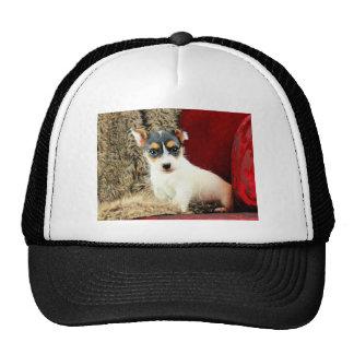 Jack Puppy Love Trucker Hat