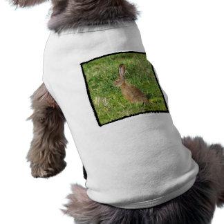 Jack Rabbit dog shirt