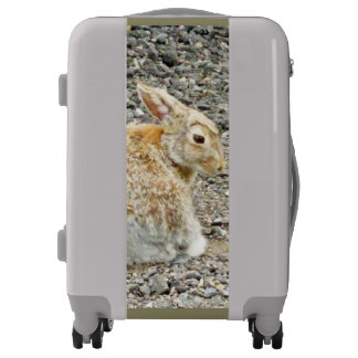 Jack Rabbit Luggage