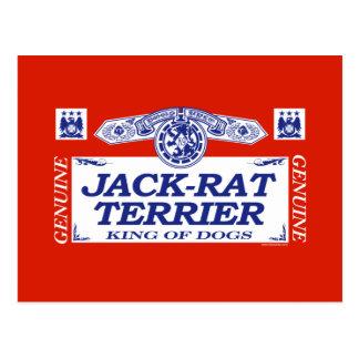Jack-Rat Terrier Postcard